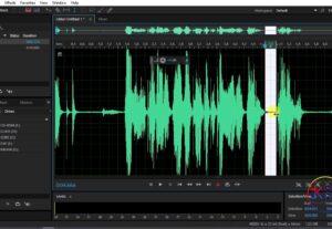 33580Editing e pulizia tracce audio